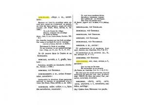 Dictionnaire de l'ancienne langue française et de tous ses dialectes du IXe au XVe siècle, Frédéric Godefroy, 1880-1895, volume 7, page 478.